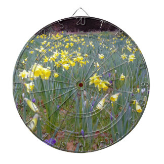 beginning of spring.jpg dartboard