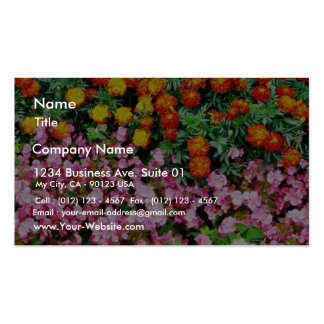 Begonia French Marigold Business Card