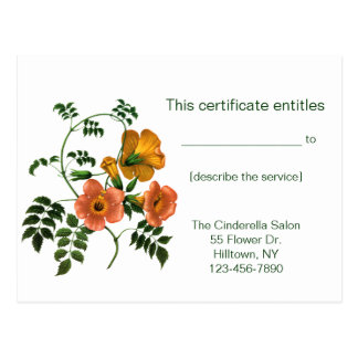 Begonia Gift Certificate Post Cards