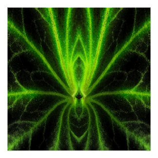 Begonia Leaf Abstract Poster