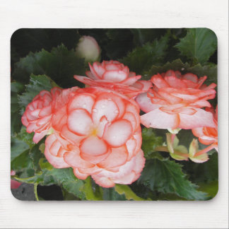 Begonia Mouse Pad
