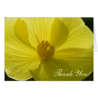 Begonia, Thank You! Cards