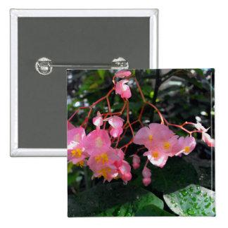 Begonias del ala del ángel pin