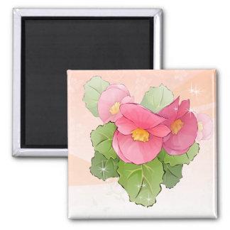 Begonias rosadas dibujadas mano imán de nevera
