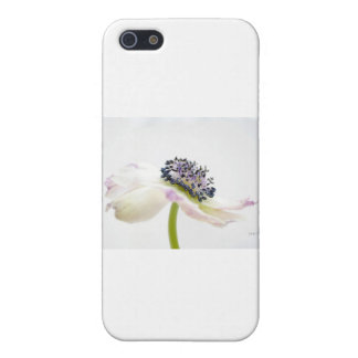 Beguile iPhone SE/5/5s Cover