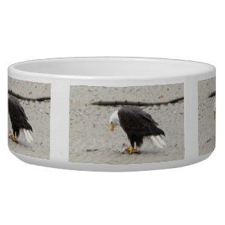 BEHF Bald Eagle Hoarding Fish Bowl