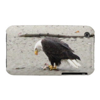 BEHF Bald Eagle Hoarding Fish iPhone 3 Case-Mate Case