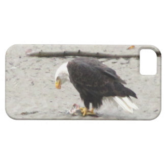 BEHF Bald Eagle Hoarding Fish iPhone SE/5/5s Case