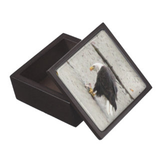 BEHF Bald Eagle Hoarding Fish Jewelry Box
