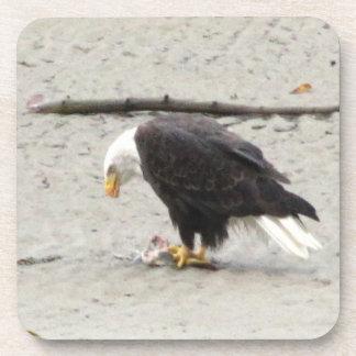 BEHF Eagle calvo que amontona pescados Posavasos