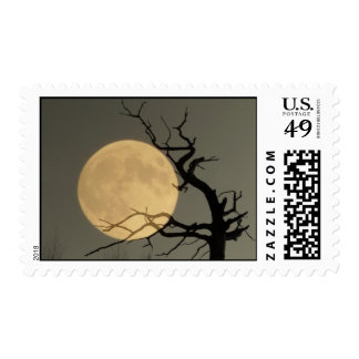 Behind, Full moon behind tree Postage