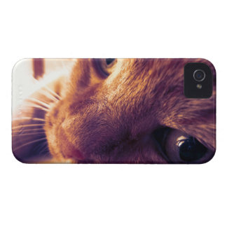 Behind schedule warm of summer iPhone 4 Case-Mate case