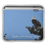 BEIAM Bald Eagle Ignores a Magpie iPad Sleeve