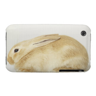 Beige bunny rabbit on white background 4 Case-Mate iPhone 3 case