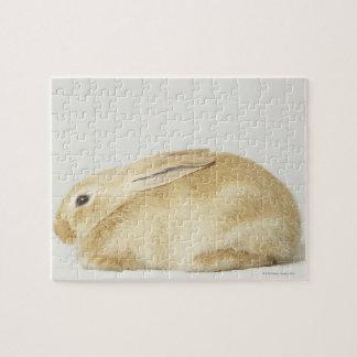 Beige bunny rabbit on white background 4 jigsaw puzzle