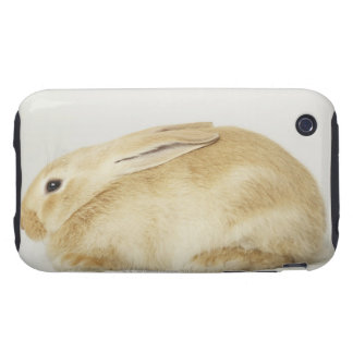 Beige bunny rabbit on white background 4 tough iPhone 3 cases