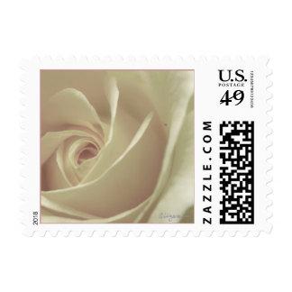 Beige Cream Rose Bud Small Wedding Postage