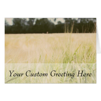 Beige Wheat Field Closeup, Nature Photograph Card