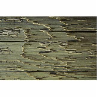 Beige Wood Grain Photo Sculptures