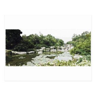 Beijing BotanicalGardens Drawing Postcard