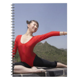 Beijing, China, 2007 2 Spiral Note Books