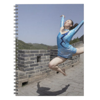 Beijing, China, 2007 Notebook