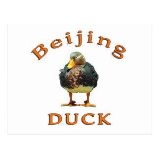 Beijing duck postcard