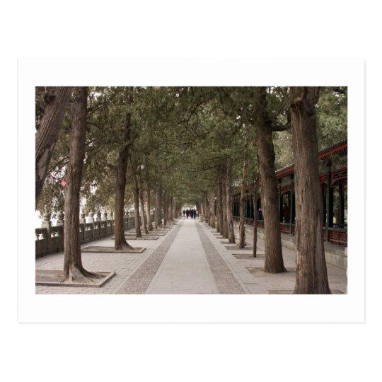 Beijing Postcard