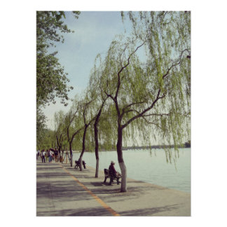 Beijing summer palace lake and trees poster