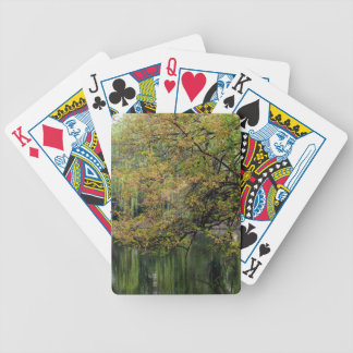 Beijing Zoo Pond Bicycle Playing Cards