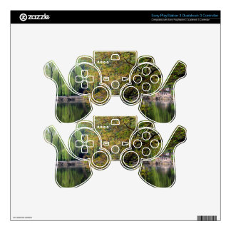 Beijing Zoo Pond PS3 Controller Decal