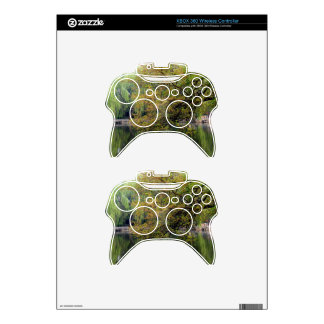 Beijing Zoo Pond Xbox 360 Controller Decal