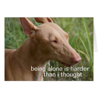 being alone dog greeting card