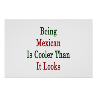 Being Mexican Is Cooler Than It Looks Poster