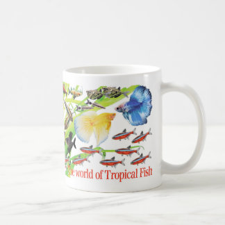 Being small, the lovely small-sized tropical fish classic white coffee mug