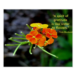 Being Thankful for Mother Nature's Wild Flowers Poster