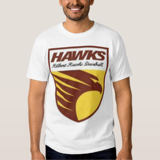 Béisbol de los halcones camisas