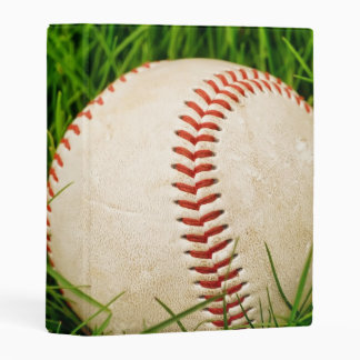 Béisbol en álbum de la hierba del verano el mini mini carpeta