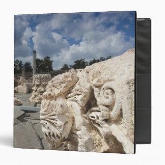 Beit She-An National Park, Roman-era ruins Vinyl Binder