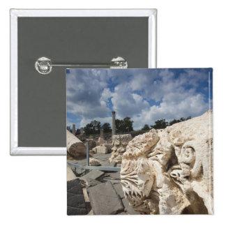 Beit She-An National Park, Roman-era ruins Pinback Buttons