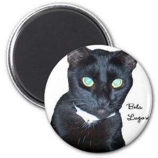 Bela the Black Cat Photo Refrigerator Magnet