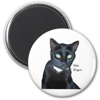 Bela the Black Cat Photo Magnets