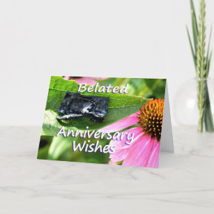 Belated anniversary cards zazzle belated anniversary apology2 customize card m4hsunfo