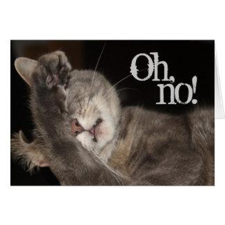 Belated Birthday, Cat Greeting Card