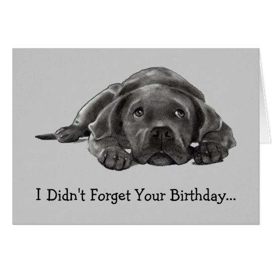 BELATED BIRTHDAY: DIDN'T FORGET: TOO LAZY, DOG CARD