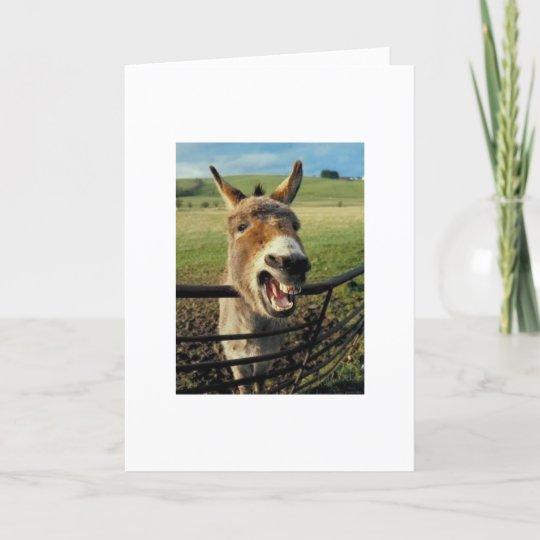 Belated Birthday Donkey Card Zazzle