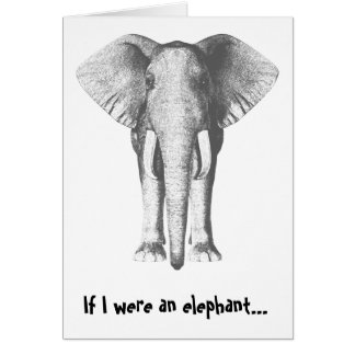 Belated Birthday - Elephant Greeting Card