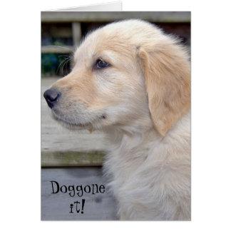 Belated Birthday-golden retriever puppy Card