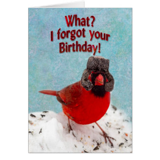 BELATED BIRTHDAY - WHAT? I FORGOT YOUR BIRTHDAY! GREETING CARD