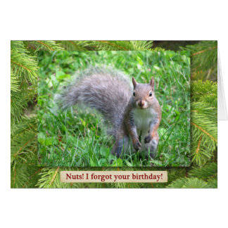 Belated Happy Birthday Card with Grey Squirrel